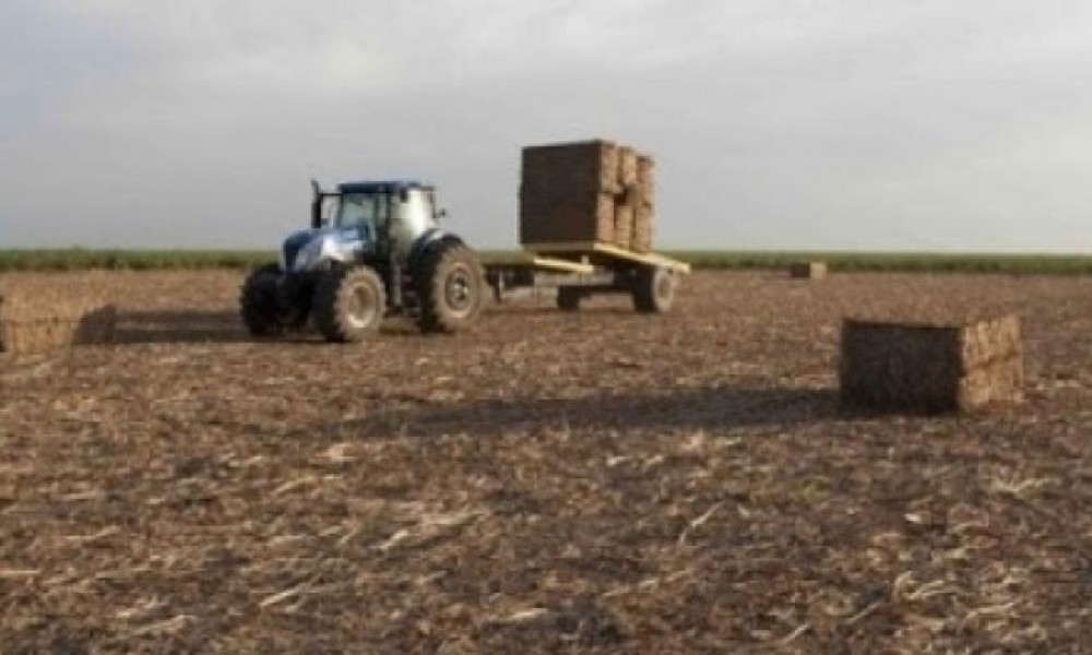 Biocombustíveis 'high tech' em alta