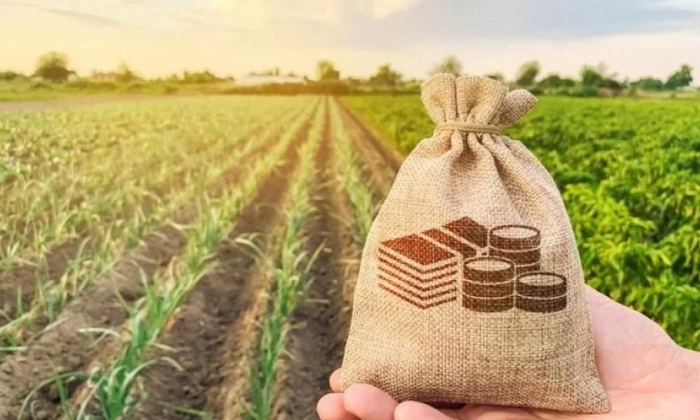 Confaz renova Convênio 100 até 2025; fertilizantes ficam de fora