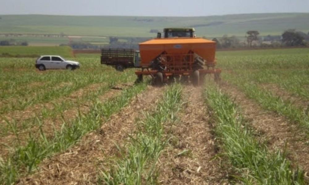 Entrega de fertilizantes crescerá a 41,8 milhões de toneladas no Brasil, diz Stonex